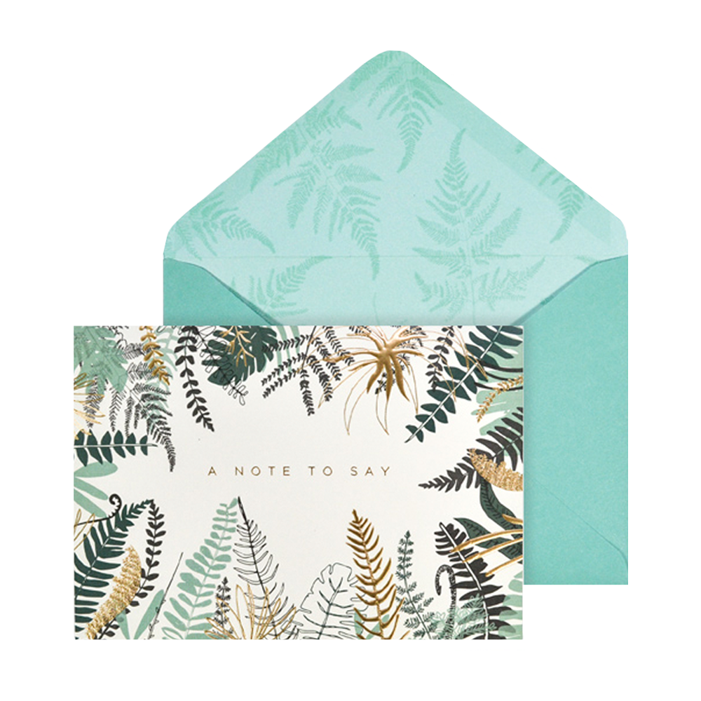 Portico ferns card set