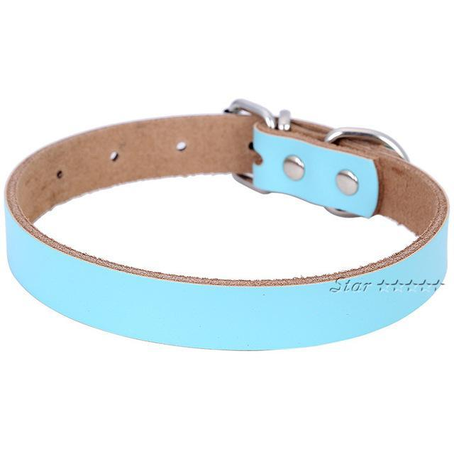 Nirvana Life Pets Blue / M Genuine Leather Dog Collar