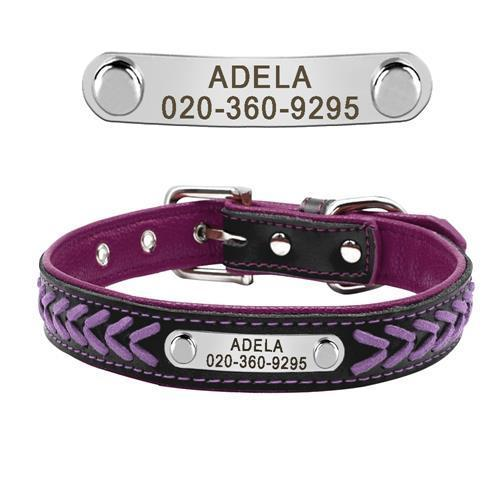 Nirvana Life Pets Purple / L Braided Leather Collar with Personalized Engraving
