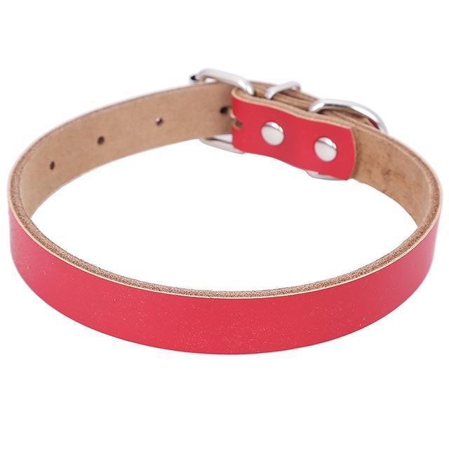 Nirvana Life Pets Red / M Genuine Leather Dog Collar