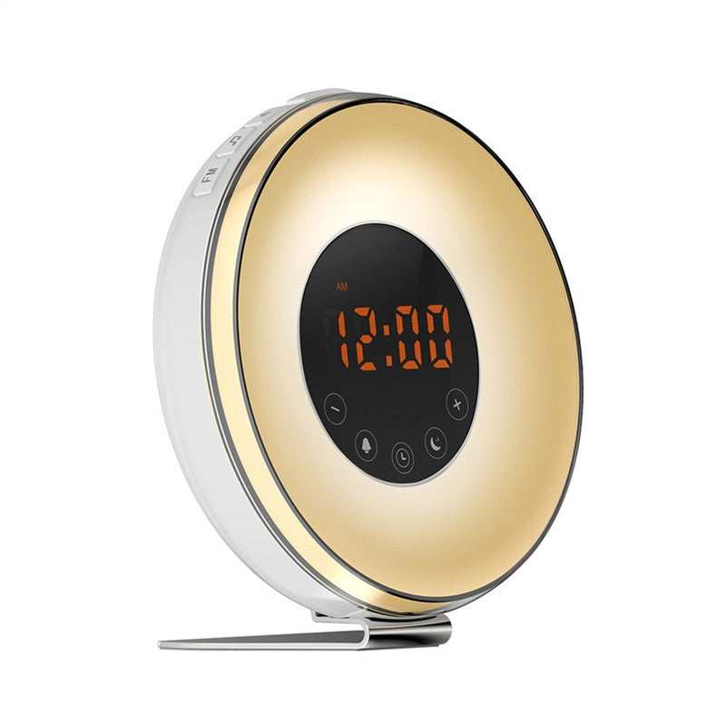 FM Winter Alarm Clock