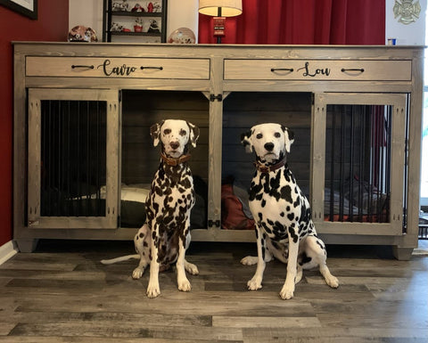 Dalmatians in front of a wooden dog crate
