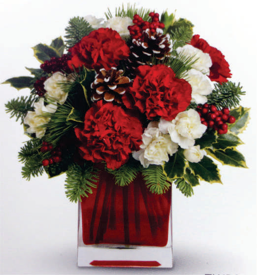 XA 1131 arrangement Festive Cube red and white