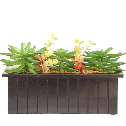 "Succulents in wooden pot 16x6x10""H"
