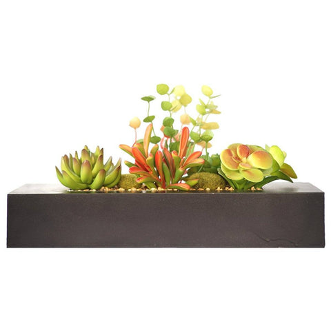 "Succulents in Wooden Planter 14x6x8""H"