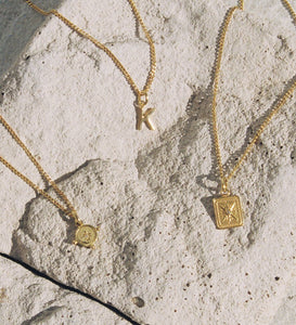 Tiny True North Coin Necklace - (18K Gold Vermeil)