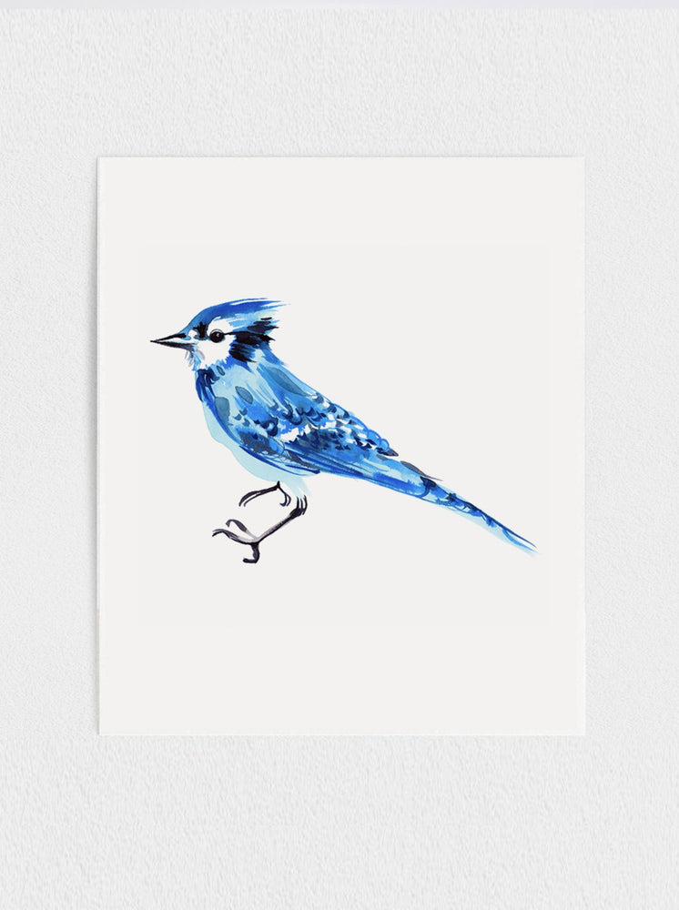 Load image into Gallery viewer, Bluejay Print