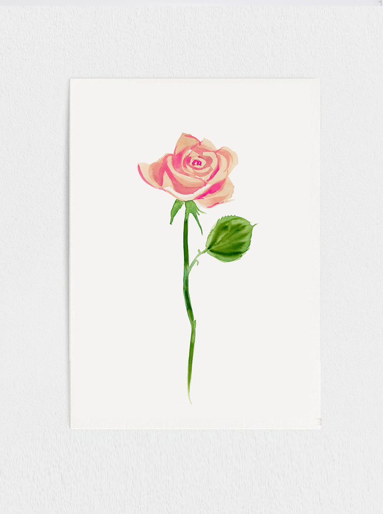 "Blush Rose #2 Original Watercolour Painting - 11"" x15"""
