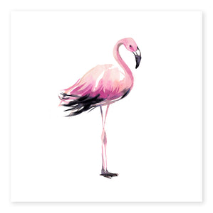 Flamingo Limited Edition
