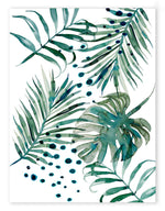 Palm Botanica Limited Edition