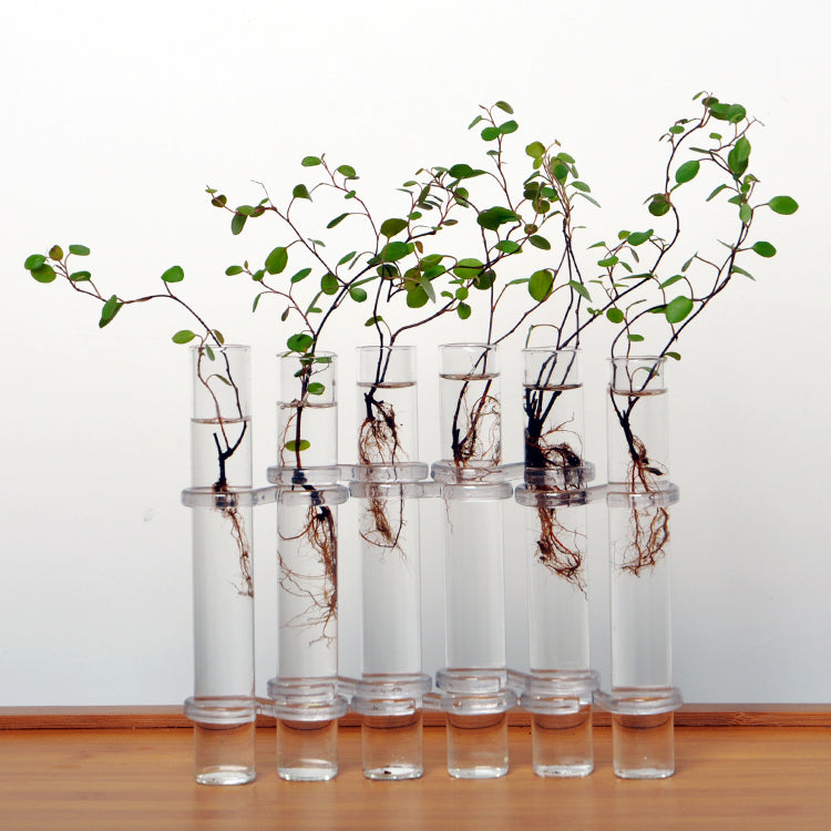 6 Tubes Flower Vase - The Unique Home