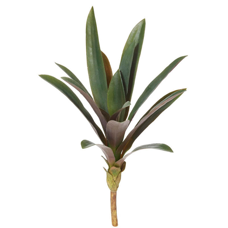 Rhoeo Faux plant from Rogue