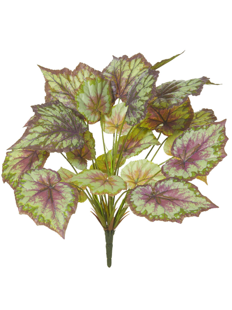 Wax Begonia Bush from Rogue lightbox gift and home