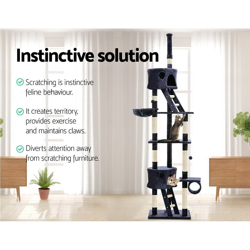 ipet 260cm scratch tree blue ladder closeup