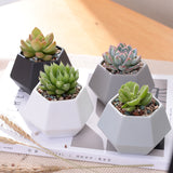 Mini Hexagon Ceramic Flowerpot  Set - 4pcs Matt Porcelain