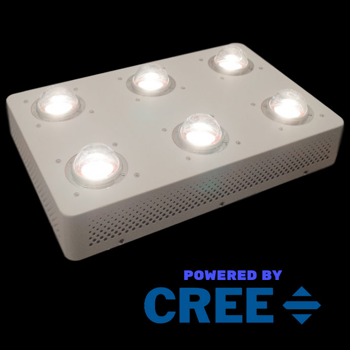 4Seasons - Luma CREE CXB3590