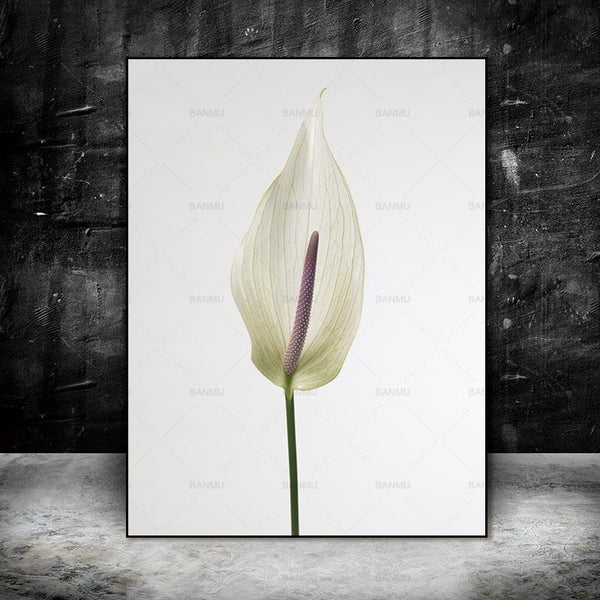 The Lone Flower - Canvas Art Print-wall art-Chef's Quality Cookware