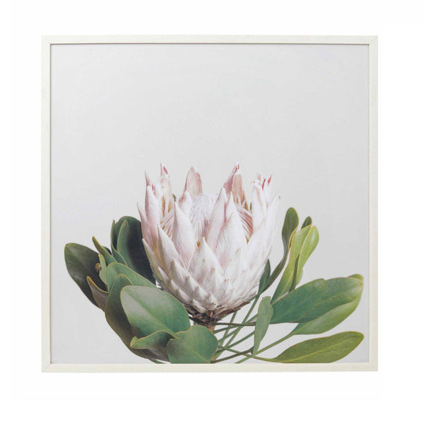 Proteas Flower Wall Decor Wall Art With Frame-wall art-Chef's Quality Cookware