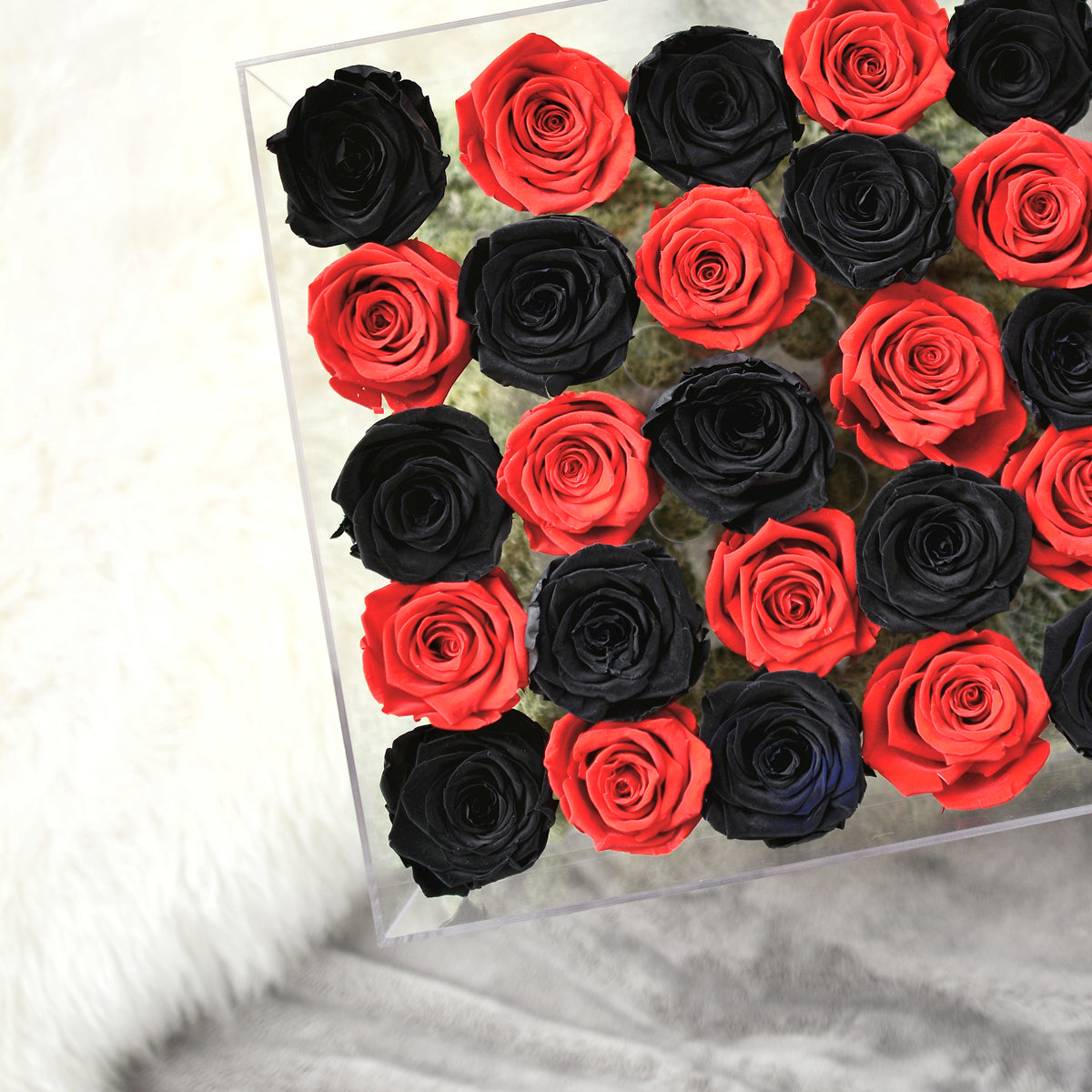Large Amore Acrylic Rose box with checker roses