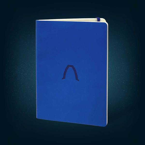 Singularity Real Engineering Notebook