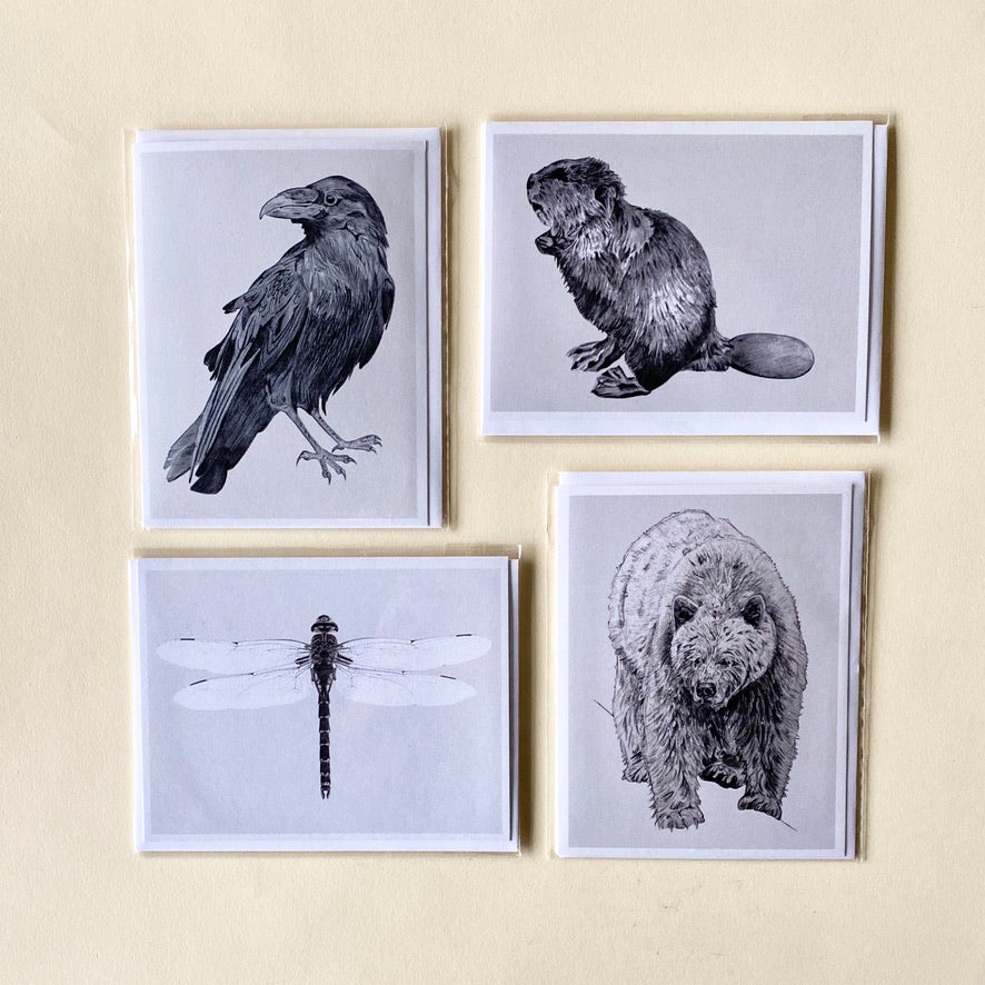 Sarah Hammond Cards