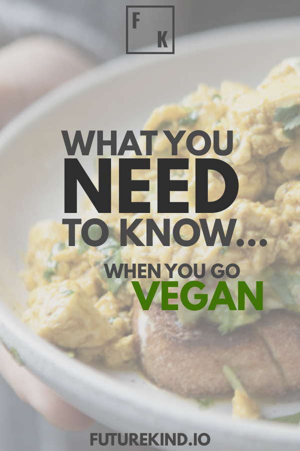 If you want to know how to go vegan, you're not alone. Going vegan has grown massively in the last few years. Vegans are popping up left right and centre. So what does it take to become vegan? Some vegan recipes? A little vegan inspiration? Copying a vegan celebrity? Well, there's a few tips you can use to master veganism, fast! #vegan #veganism #govegan #becomevegan #howtogovegan #goingvegan