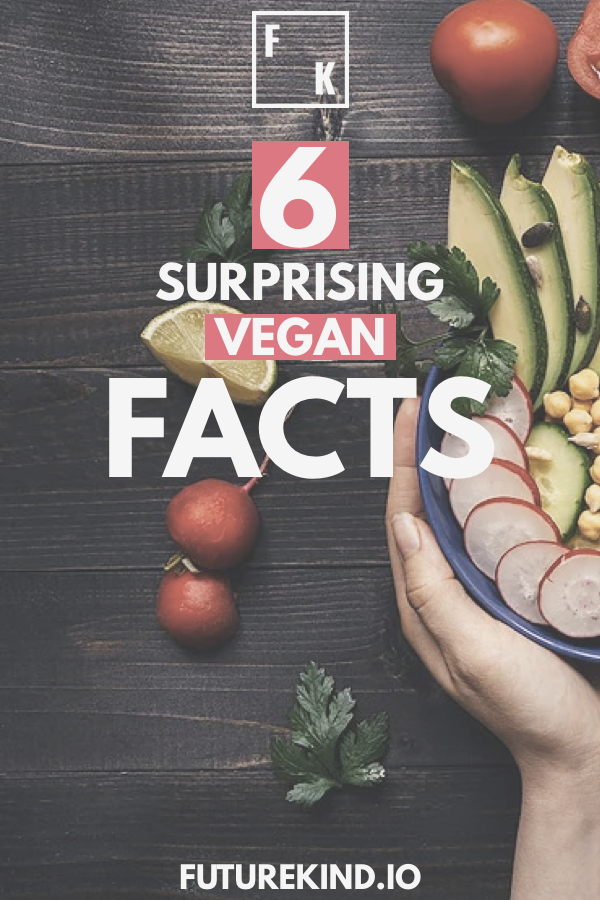 Vegans are constantly bombarded by fear & misinformation. Having some vegan eco or vegan health facts in your back pocket can help you in a tricky argument. This article is about more than that though. By understanding the reasons healthy vegans eat the way they do, you can become healthier and happier. #veganhealth #vegan #vegans #veganism