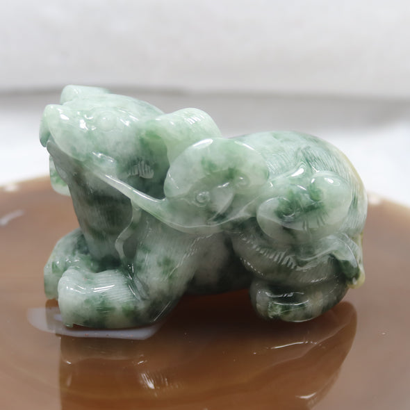 Type A Burmese Jade Jadeite Feng Shui Pig with Ruyi Display