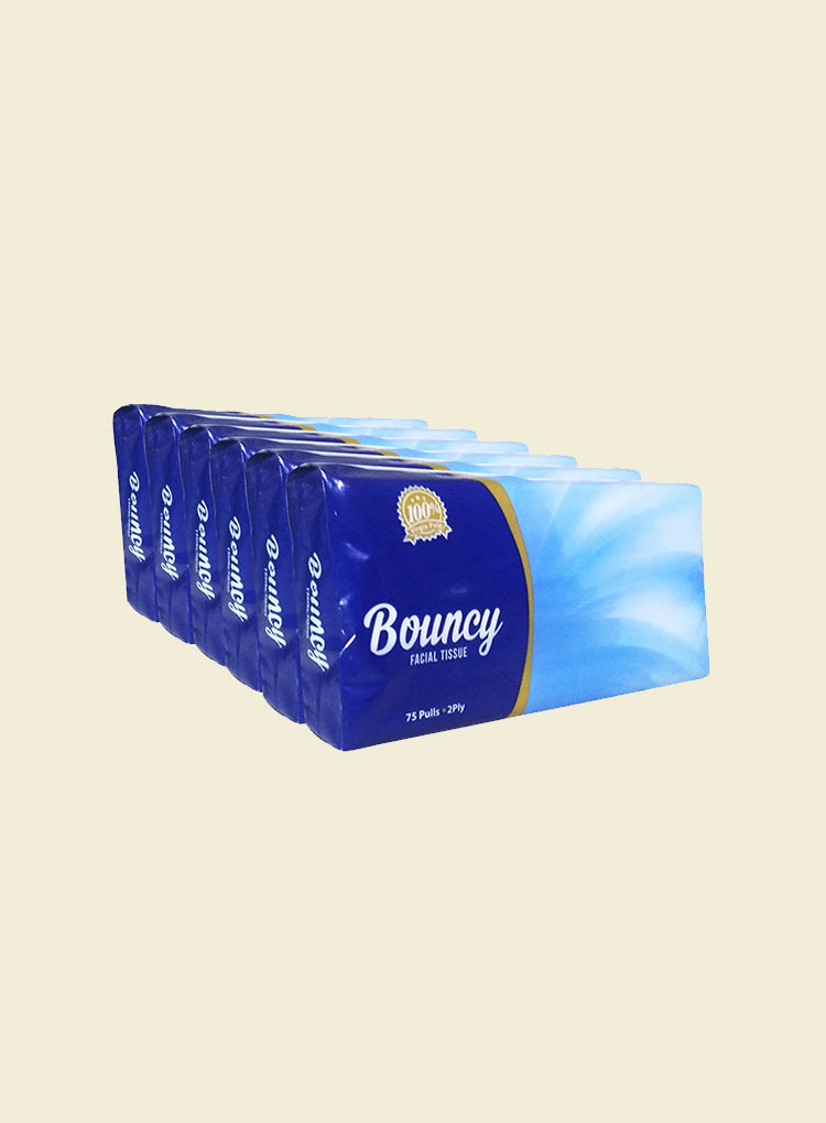 ALL YEAR HOME BOUNCY FACIAL TISSUE TRAVEL PACK 2-PLY