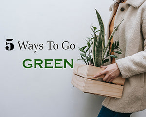 5 Ways to Go Green with Your New Home