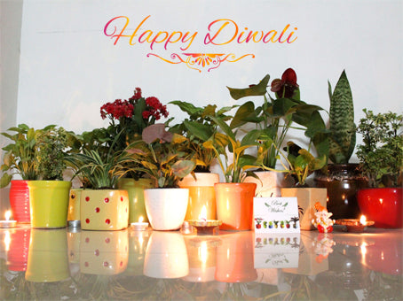 Spread Joy with Green Gifting This Diwali