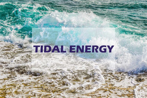 All You Need to Know About Converting Tidal Waves into Energy