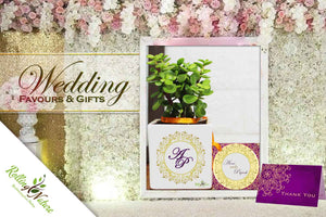 Plant Wedding Gifts & Favours