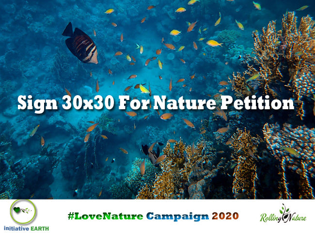 Initiative, Earth, For, Nature, Rolling, Plants, Campaign, Love, Nature, Biodiversity, Environment, Day, World, Oceans, Initiative, Earth, Blog, Pune, 2020, Conservation, Earth,