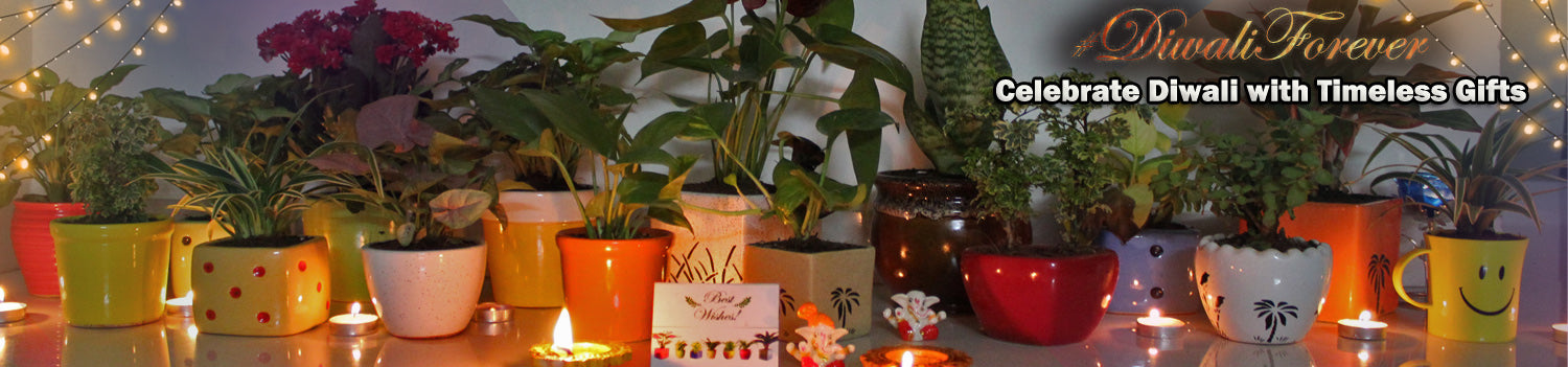 Diwali Gift, Deepavali, Home Decor, Decoration, Lights, Diya,  Candle
