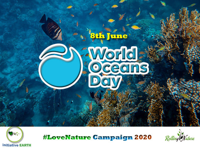 Initiative, Earth, For, Nature, Rolling, Plants, Campaign, Love, Nature, Biodiversity, Environment, Day, World, Initiative, Oceans, Earth, Blog, Pune, 2020, Conservation, Earth,