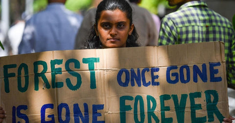 Save, Earth, Initiative, Rolling, Nature, Stacey, George, India, Youth, Ravi, Environment, Environmental Awareness