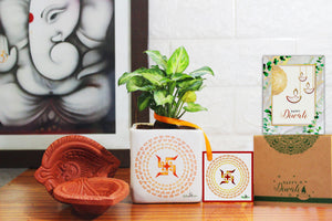 Rolling Nature Air Purifying Good Luck Syngonium Green Plant in White Square Shubh Labh Divine Ceramic Pot