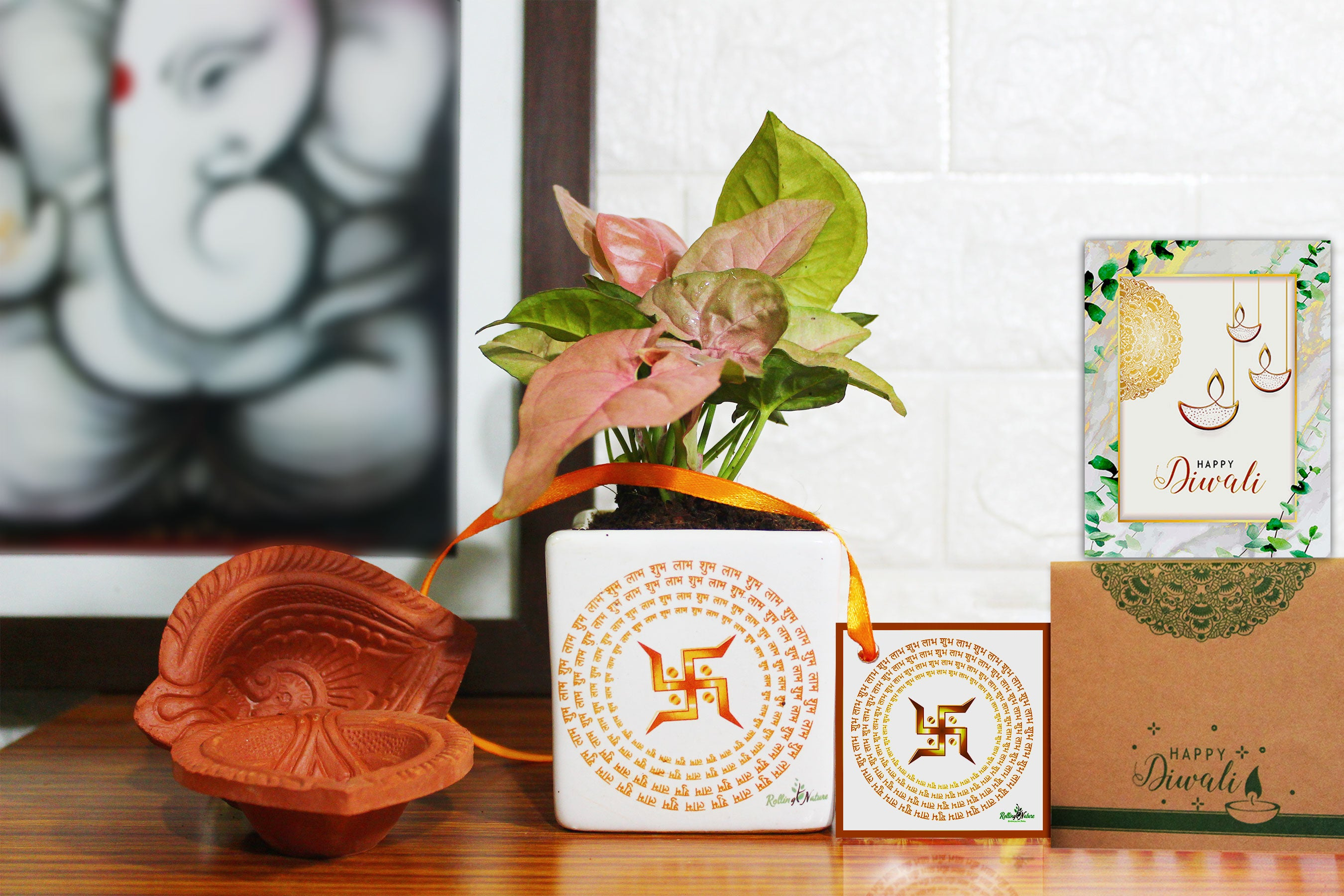 Rolling Nature Air Purifying Good Luck Syngonium Pink Plant in White Square Shubh Labh Divine Ceramic Pot