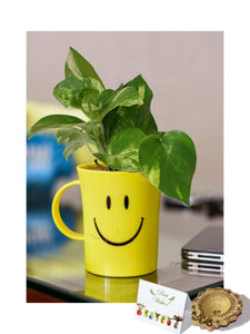 Rolling Nature Diwali Gift Combo of Good Luck Money Plant in Smiley Cup