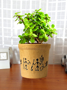 Good Luck Live Jade Plant in Brown Jar Aroez Ceramic Pot