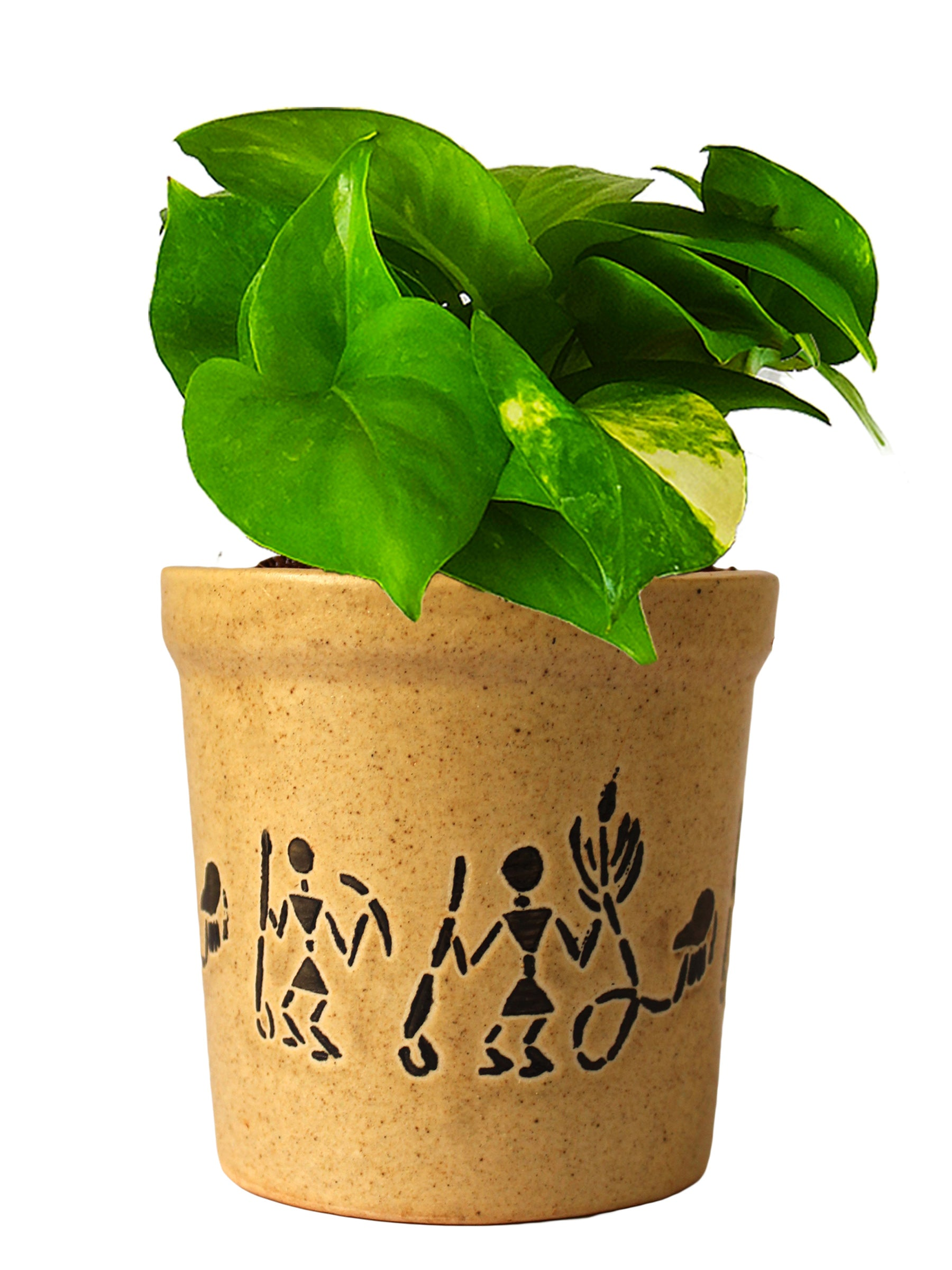 Good Luck Air Purifying Live Money Plant in Brown Jar Aroez Ceramic Pot