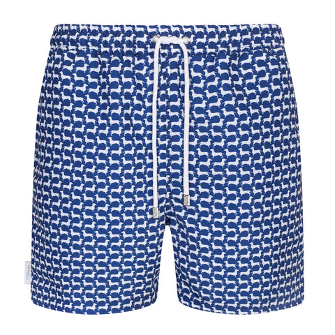Dachshund Small Print Swim Shorts