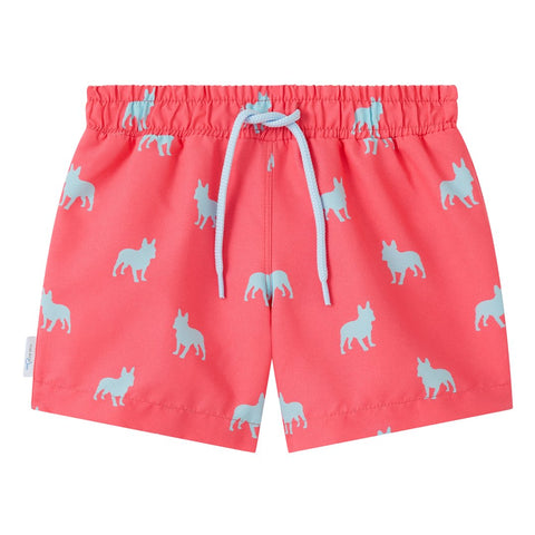 French Bulldog boys swim shorts trunks swimwear