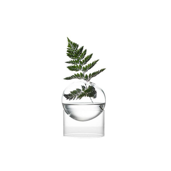 Flower Bubble Vase Transparent