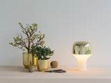 Cap Table Light - Gold
