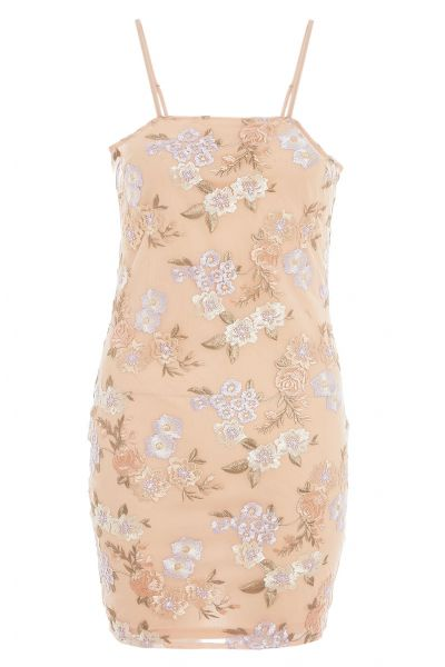 Nude And Lilac Floral Embroidered Mini Dress
