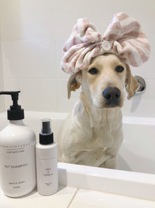 The Wick Label Pet Shampoo