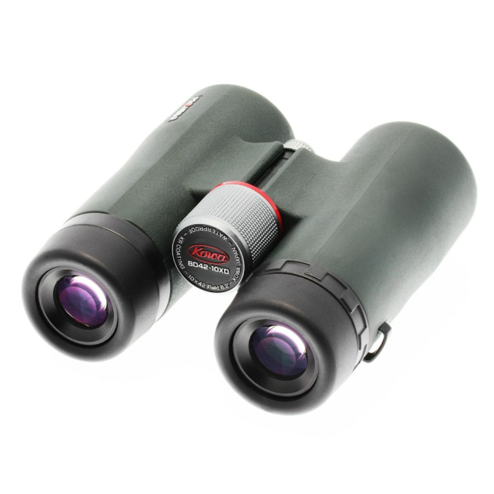 Kowa 10x42 BD-XD Prominar Binoculars Rear Right View