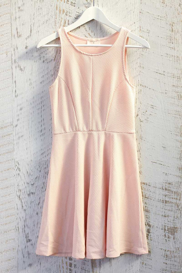 Everly Blush Skater Dress